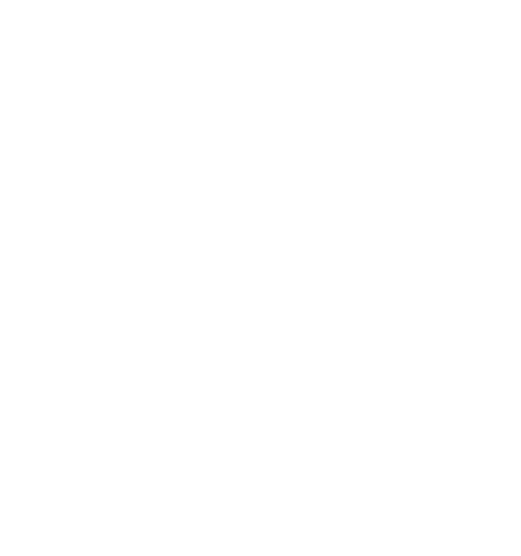 F∞F - 燃え盛る炎から羽ばたく不死鳥!!